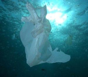 Entre el 60% y el 80 % de toda la basura que se encuentra en el mar es plástico.
