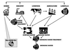 Los contaminantes tienen procedencia diversa y pueden terminar en el agua potable