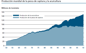 Producción mundial de la pesca de captura y la acuicultura. (FAO 2012)