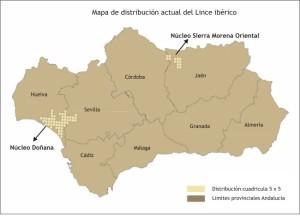 Mapa de distribución actual de lince ibérico
