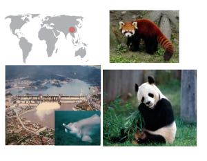 De izquierda a derecha de arriba a abajo: panda rojo, presa de las Tres Gargantas, delfín chino y panda gigante.