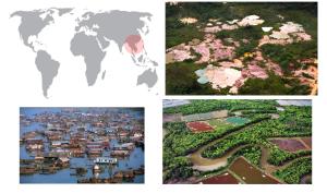 De izquierda a derecha de arriba a abajo: Minas de níquel, casas flotantes de pescadores y zonas de cría de gamba.