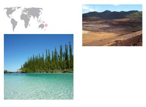 De izquierda a derecha de arriba a abajo: mina de níquel y bosque de araucarias.