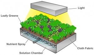 Sistema básico de vertical farming