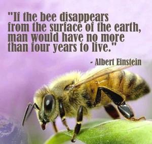 Si las abejas desaparecieran de la Tierra, el hombre no tendría mas de 4 años de vida.