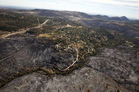 Bosques de Robledo tras el incendio del verano de 2012 (Fotografía de Carlos Rosillo)