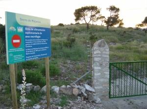El muladar de Sierra Mojantes, Murcia