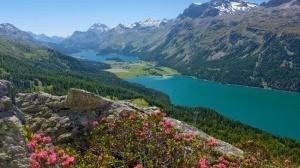 ---, Alpes