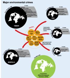 Principales crímenes ambientales