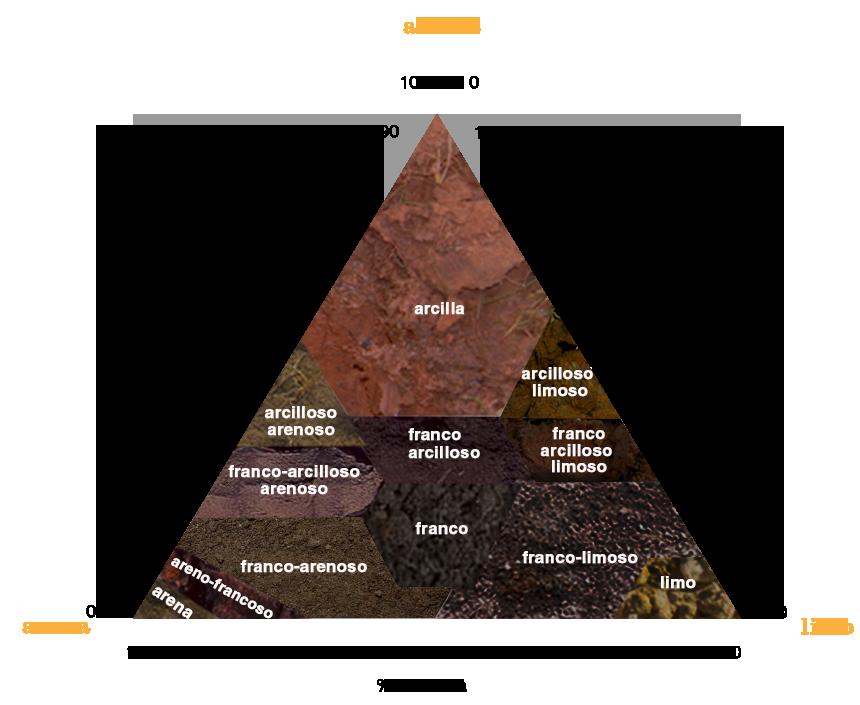 Vulnerabilidad de las reservas de carbono en el suelo - Tipos de suelos ...