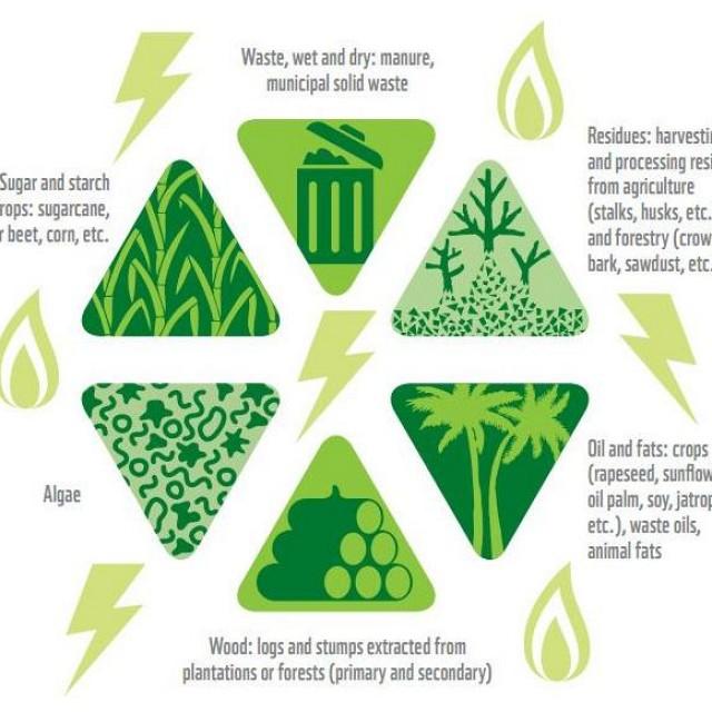 Aprovechamientos de recursos naturales para producir bioenergía