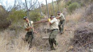Caza con trampas en Castilla la Mancha