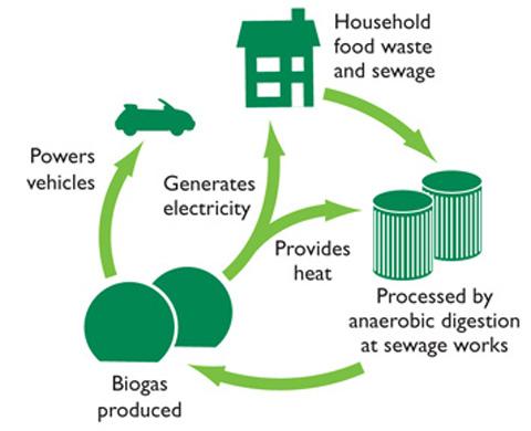 Esquema de la produción de biogás