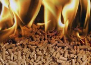 Pellets para estufas de biomasa