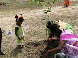 Mujeres de la aldea plantando un árbol