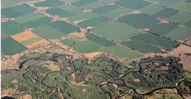 La fragmentación del paisaje puede tener consecuencias negativas para especies, poblaciones y comunidades.